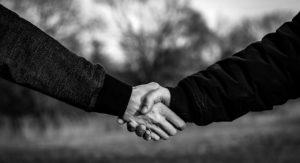 handshake, shaking hands, hands